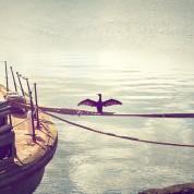 Wanderer, by Antonio Machado